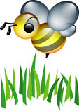 Wasp. Nice wasp Royalty Free Illustration
