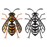 Wasp Bee Hornet vector illustration Stock Images