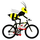 Wasp cyclist Royalty Free Stock Images