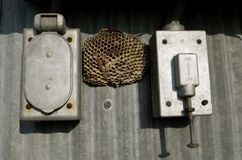 Wasp nest between electrical boxes. A wasp nest is located between two old outdoor electrical boxes on a steel corrugated building stock photography