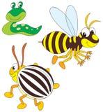 Wasp, Potato Beetle And Slug Stock Image