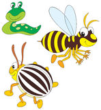 Wasp, potato beetle and slug Stock Image