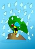 Wasp and rain. Wasp rain umbrella insect stone vector illustration