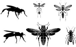 Wasp silhouettes collection Stock Image