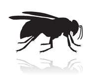 Wasp vector silhouette Stock Photos