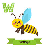 Wasp. W letter. Cute children animal alphabet in vector. Funny c Royalty Free Stock Photo