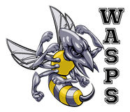 Wasps Mascot Stock Photo