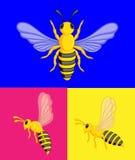 Wasps Vector Royalty Free Stock Photo