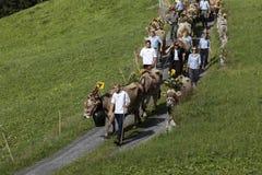Wassen, Szwajcaria, Wrzesień 15 2018: Ceremonialny jeżdżenie puszek bydło fotografia stock