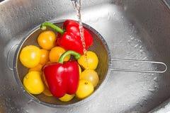 Wassende kleurrijke vruchten en groenten stock afbeelding
