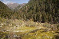 Wasser-abgefressener Bergabhang umgeben durch immergrüne Berge Stockfoto