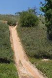 Wasser-Abzugskanal auf gepflanztem Abhang Lizenzfreies Stockfoto