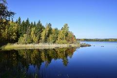 Wasser als Spiegel Fotos von wunderful Natur Swedens lizenzfreie stockfotos