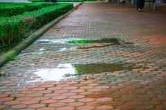 Wasser auf Bürgersteig lizenzfreie stockfotos