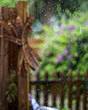Wasser auf buntem Garten des Fensters Lizenzfreies Stockfoto