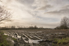 Wasser aufgezeichnete Felder Stockfotografie