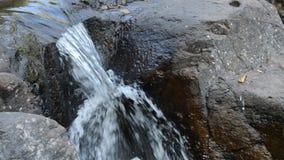Wasser, das auf Flussdurchlauffelsen und -stein im forset fällt stock footage