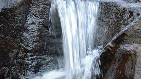 Wasser, das auf Flussdurchlauffelsen und -stein im forset fällt stock video
