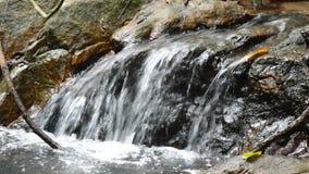 Wasser, das auf Flussdurchlauffelsen und -stein im Wald fällt stock video