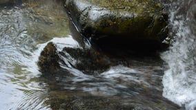 Wasser, das auf Flussdurchlauffelsen und -stein im Wald fällt stock video footage