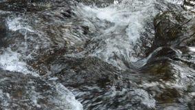 Wasser, das auf Flussdurchlauffelsen und -stein im Wald fällt stock footage