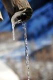 Wasser, das aus einer Wassertülle gießt Lizenzfreie Stockbilder