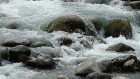 Wasser, das ?ber die Steine flie?t stock video