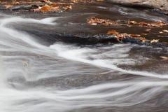 Wasser, das durch gefallene Blätter fließt Stockfoto