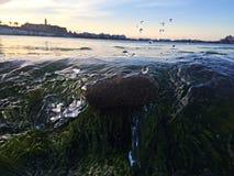 Wasser, das einen Felsen spritzt Lizenzfreies Stockfoto