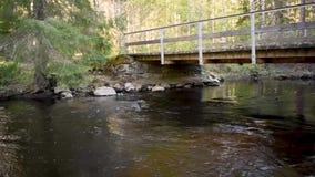 Wasser, das in einen Waldfluß mit einer kleinen Brücke fließt stock footage