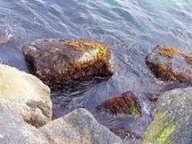 Wasser, das Felsen im Ozean spritzt lizenzfreie stockfotos