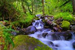 Wasser, das hinunter Felsen stolpert stockfotos