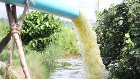 Wasser, das vom Rohr oder von der Entwässerung fließt stock video