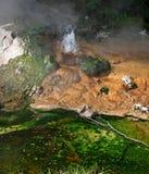 Wasser, das von einem Geysir spurtet Lizenzfreie Stockbilder