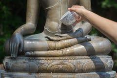 Wasser, das zur Buddha-Statue gießt Stockbild