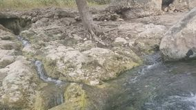 Wasser, das zwischen Felsen in einen Strom fließt stock footage