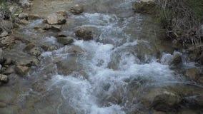 Wasser, das zwischen Steine läuft stock footage