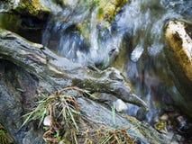 Wasser in der Bewegung Lizenzfreie Stockbilder