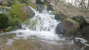 Wasser fällt über Felsen stock footage