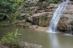 Wasser-Fall Stockbilder