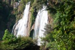 Wasser-Fall, Miezekatze Stockfotografie