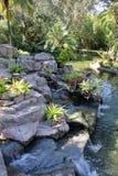 Wasser-Garten an Bush-Gärten Lizenzfreies Stockfoto