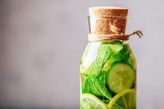 Wasser gewürzt mit Zitrone, Gurke und Minze Lizenzfreies Stockbild
