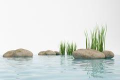 Wasser, Gras und Stein Stockfotografie