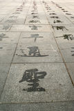 Wasser-Hieroglyphen Lizenzfreies Stockbild