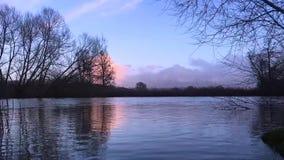 Wasser im Fluss stock video