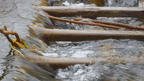 Wasser im Strom fließt ein hölzernes Hindernis durch stock video