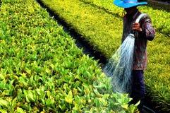 Wasser ist Leben Lizenzfreie Stockfotos