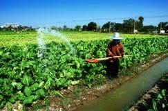 Wasser ist Leben Lizenzfreie Stockbilder