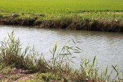Wasser-Kanal Lizenzfreies Stockfoto